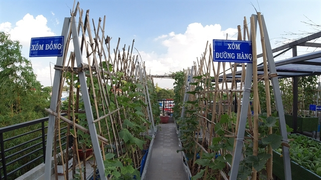 Rooftop garden is peaceful retreat food resource for HCM City family