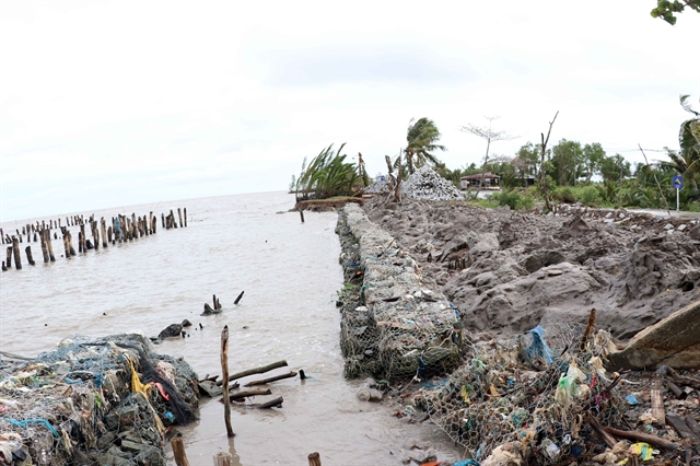 Cà Mau asks for Govt support to prevent erosion at western sea dyke