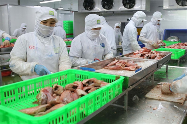 Over 7000 C/O issued for exports to EU in August
