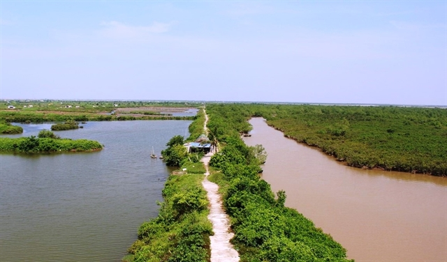 Việt Nam responds to World Wetlands Day