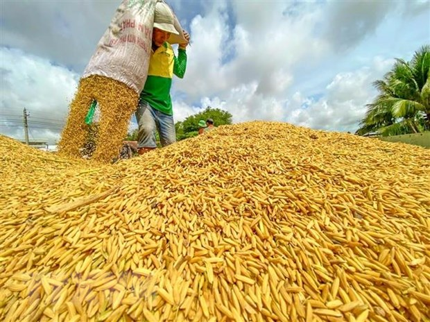 World Food Day 2021: More sustainable agri-food systems needed