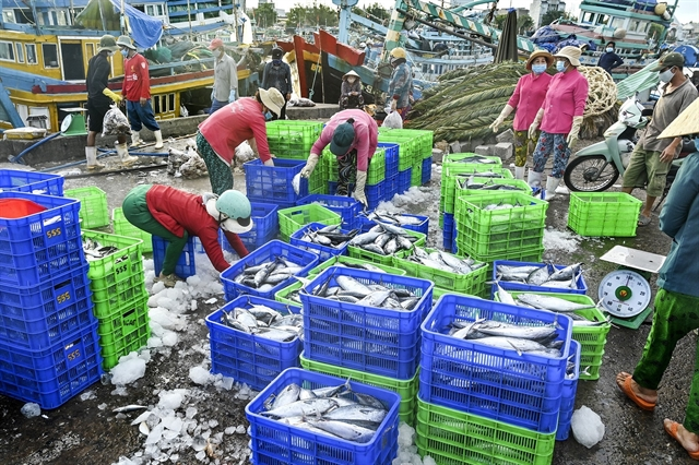 Việt Nam to complete fishery management institutions in Q4
