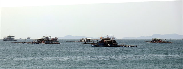 Kiên Giang aims for 24% growth in marine aquaculture
