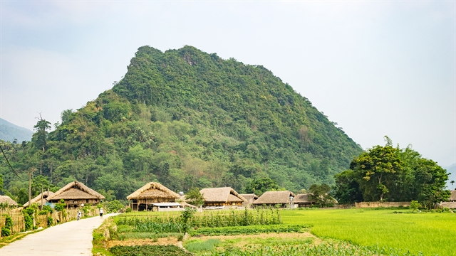 Discovering peaceful Tha Village in Hà Giang