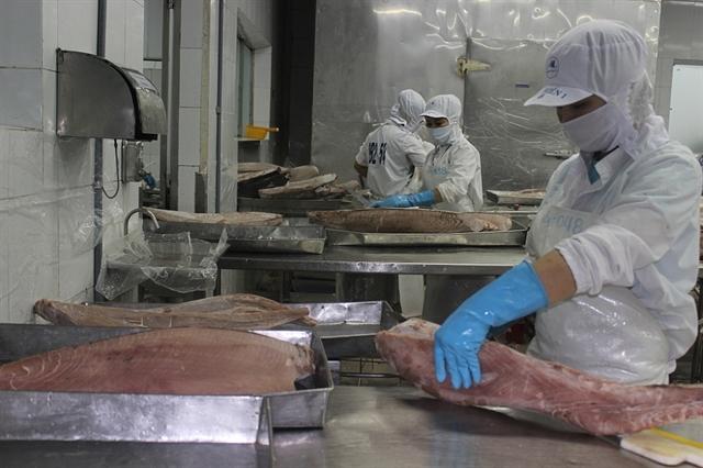 Tuna exports to EU grow thanks to trade deal