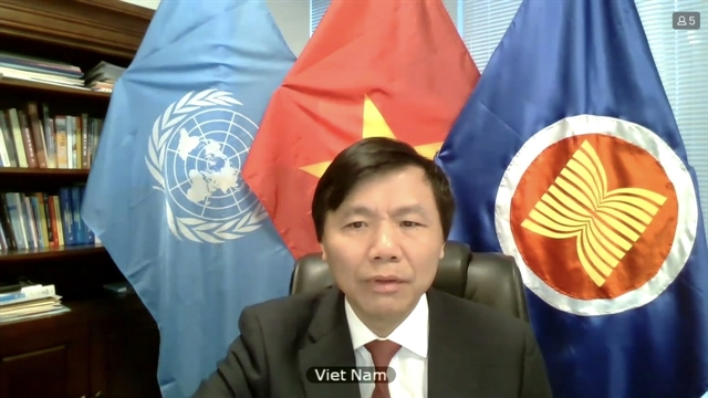 Việt Nam concerned about use of force in international relations