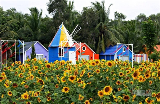 Flower villages ready to welcome visitors in Tết
