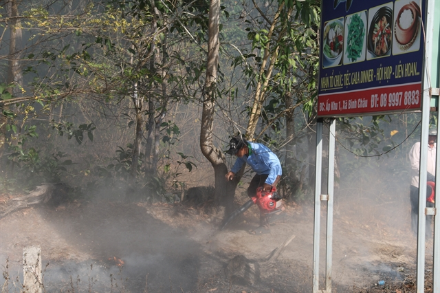 Bà Rịa – Vũng Tàu tightens forest-fire prevention measures