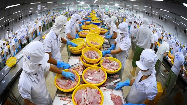 Fishery exporters take pandemic in their stride