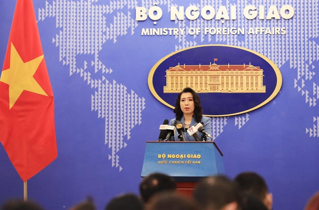 Việt Nam takes ensuring safety for foreigners seriously: foreign ministry spokesperson