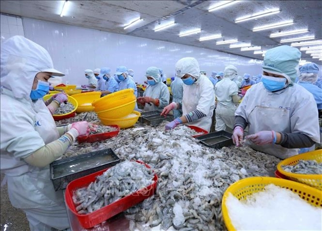 Việt Nam to be among worlds main shrimp producer