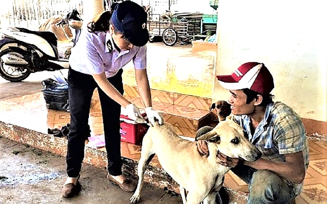 Rabies deaths a concern for Đắk Lắk residents