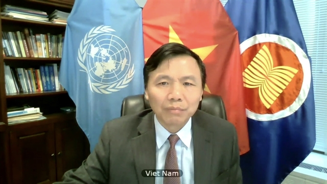 Việt Nam backs UN strategy to promote peace in Great Lakes Region