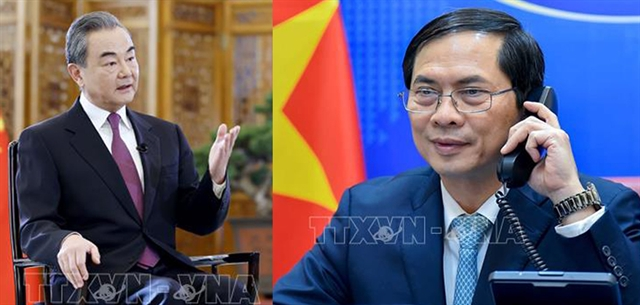FM Bùi Thanh Sơn holds phone talk with Chinese counterpart