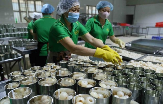 Việt Nams exports to the US expected to rise sharply