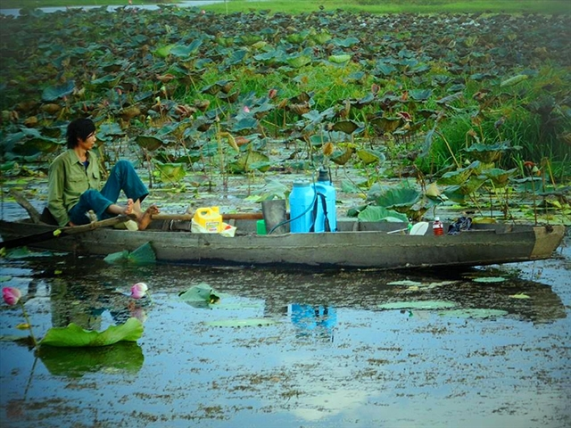 People living near Ea Sup Lake catch fish and lotus stems to make a living