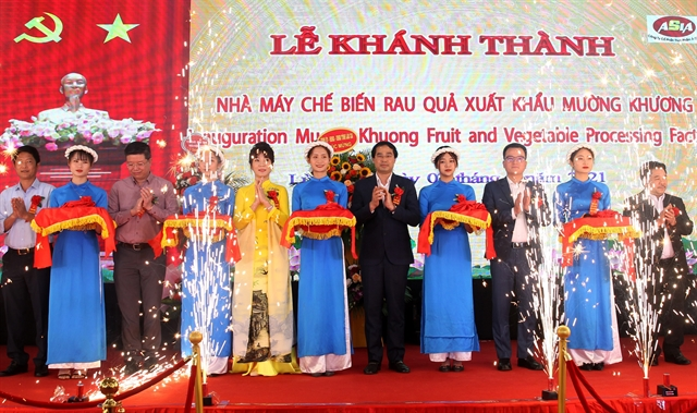 Large farm produce processing factory inaugurated in Lào Cài