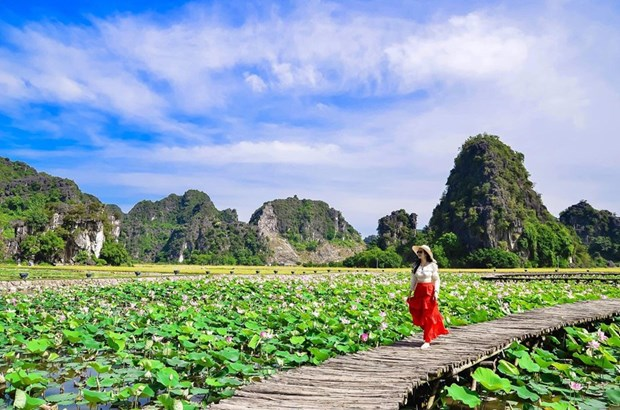 Ninh Bình promotes agricultural tourism