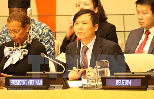 Ambassador reviews Việt Nams month-long UNSC Presidency