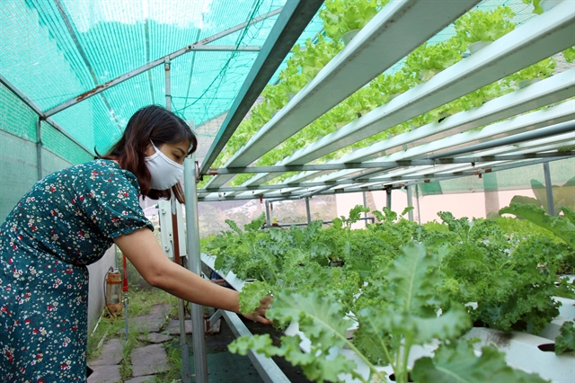 Smart Village a new hope for high technology application in agriculture