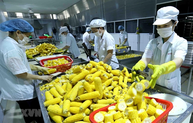 Việt Nam needs to invest in processing packaging of agricultural products: experts