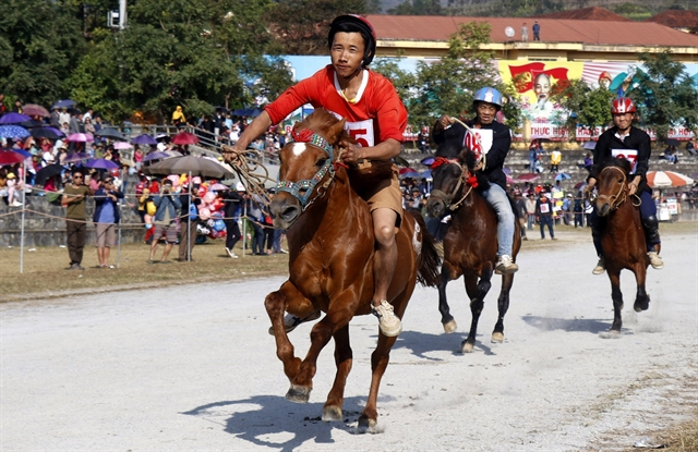 Lào Cais traditional horse racinggets national heritage status