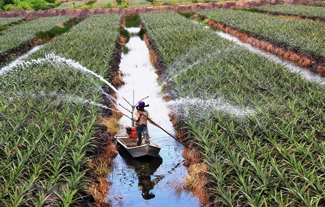 Newpolicies drafted to encourage investment in agriculture