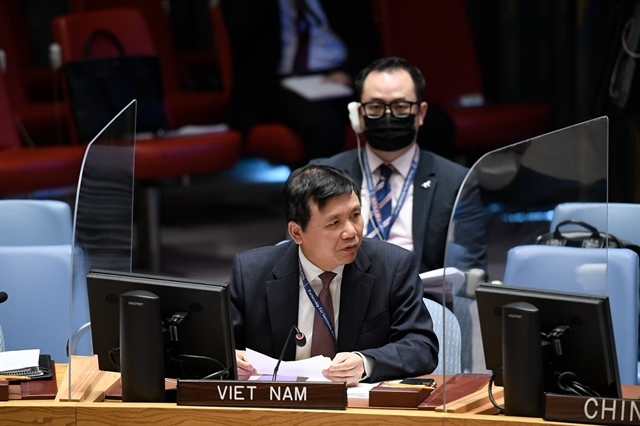 Việt Nam calls on Mali to increase national conciliation implement transition roadmap