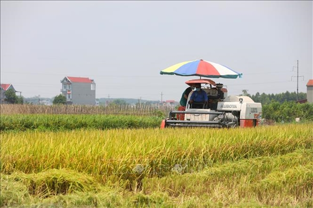 Việt Nam aimingfora sustainable food system