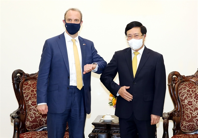 Deputy PM proposes UK further facilitate Việt Nams access to COVID-19 vaccine supplies
