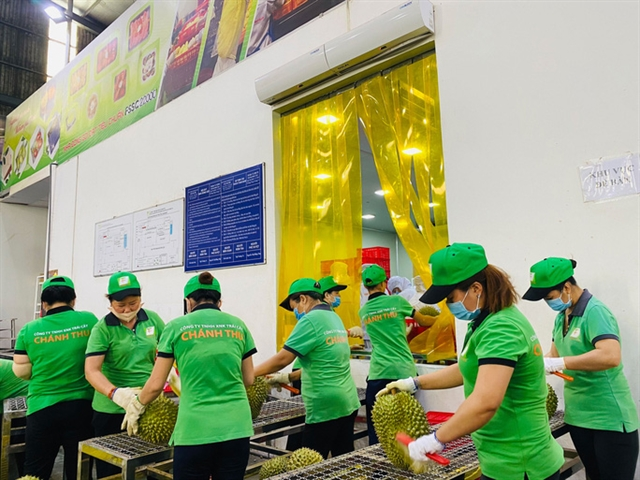VN fruit vegetable exports to top record 4b in 2021