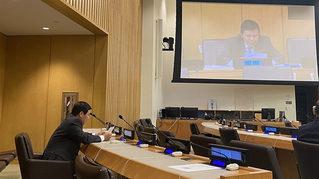 Việt Nam reaffirms importance of 1982 UNCLOS especially in South China Sea issue