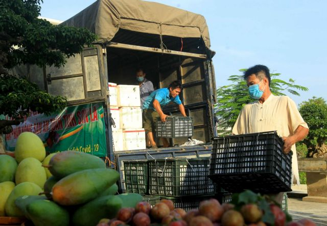 HàNội promotes consumption of farming products