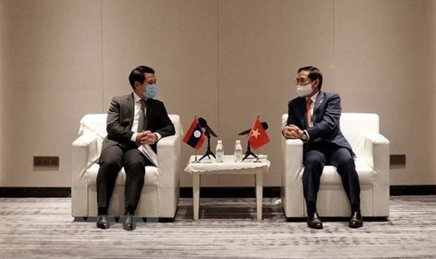 Foreign ministers of Viet Nam Laos discuss COVID-19 fight