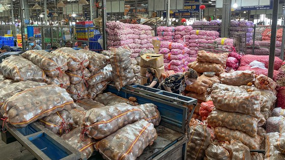 Goods transport to HCM City not much affected by pandemic