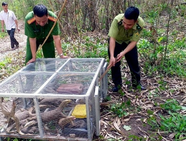 Two women fined43000 for involvement in illegal wildlife trade