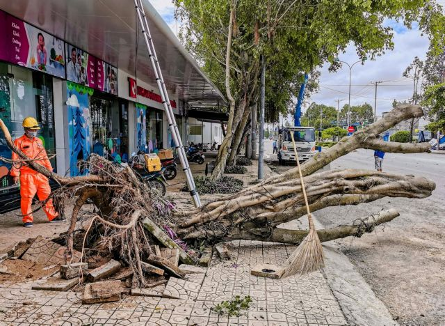 Strong winds rains kill 2 in Mekong Delta destroy houses trees