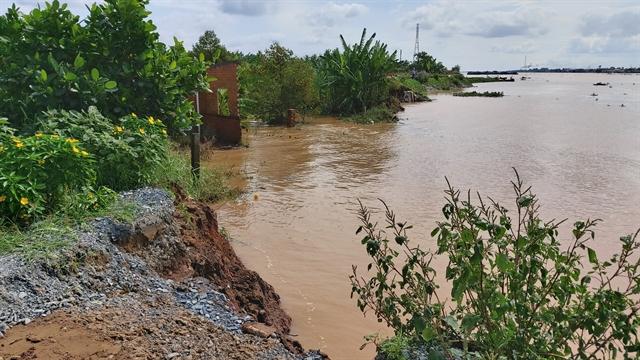 Bến Tre seeks to build 2 dykes to prevent river coastal erosion