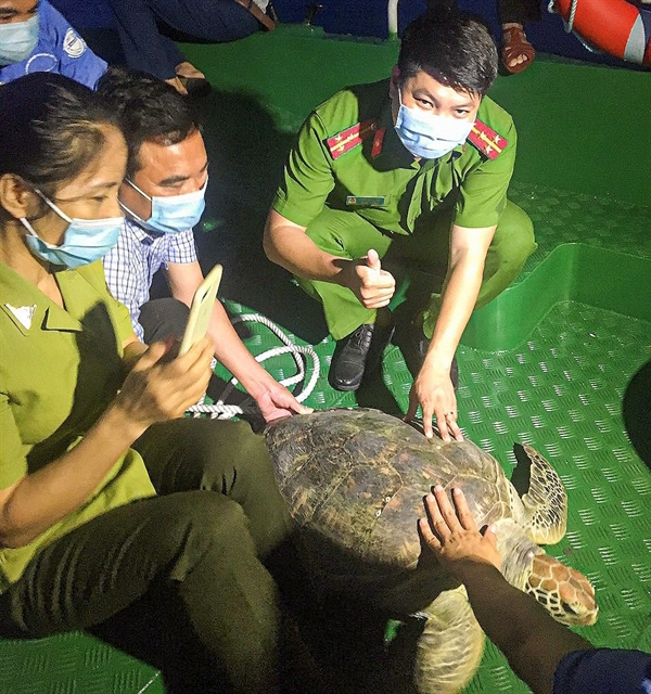 Illegal wildlife trade cracked down nationwide