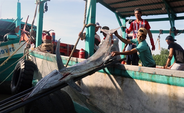 Việt Namcould loseUS480 million per year due to illegal fishing