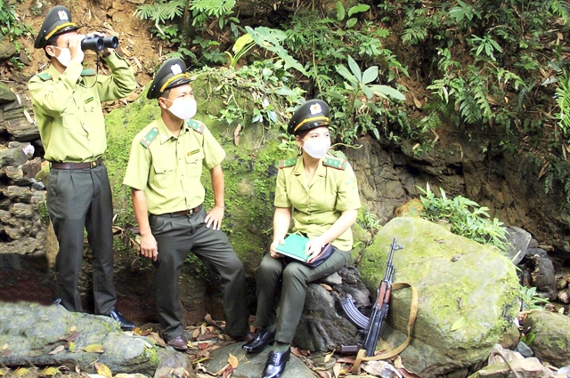 Hà Nội makes efforts to protect the citys green lung