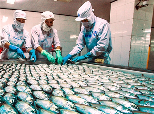 Việt Nam strives to be a global seafood processing centre
