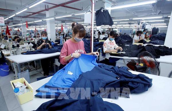 EVFTA - A catalyst for Vietnamese businesses: diplomat
