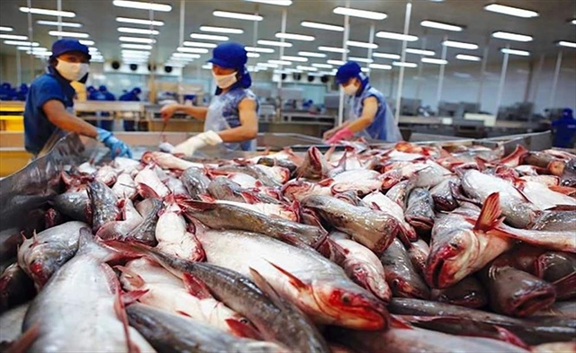 Pangasius exporters set for difficult times this year amid COVID pandemic