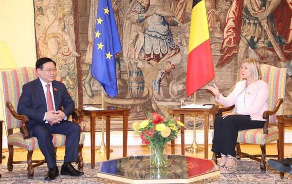 NA Chairman holds talks with leader of Belgiums Chamber of Representatives