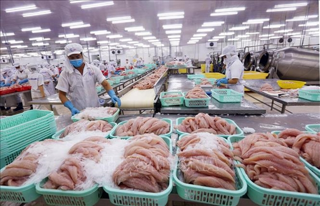 Many Vietnamese seafood exporters are not subject to US anti-dumping tariffs