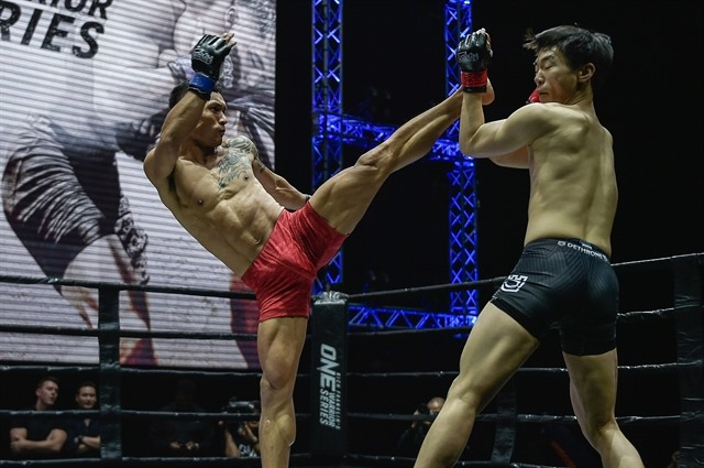 MMA has bright future in Việt Nam