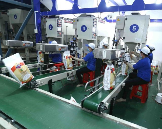 Việt Nam to achieverice export target this year: insider