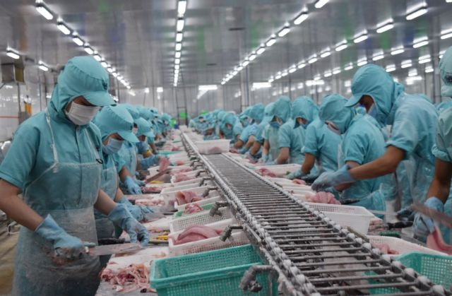 Tra fish exporters struggle with production exports on pandemic lack of water