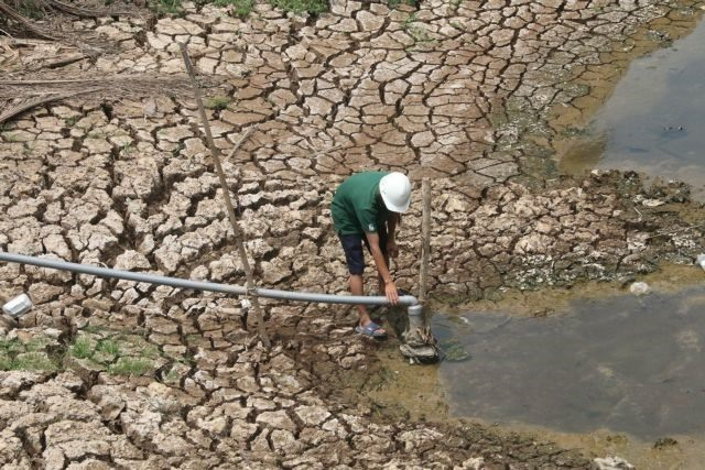 Cửu Long Delta takes measures to cope with saltwater intrusion